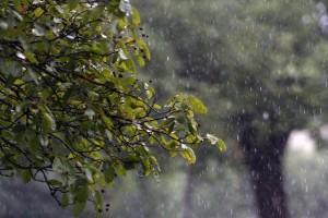 rain-829669_960_720